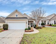 17448 Hawks View  Drive, Indian Land image