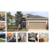 2117 Roanoke Springs Drive, Ruskin image