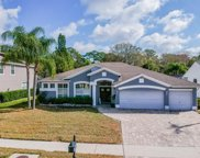 5011 Kernwood Court, Palm Harbor image