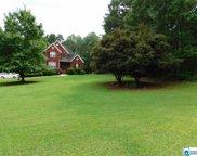 446 Oak Valley Rd, Springville image