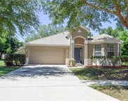 508 Forsyth Creek Court, Apopka image