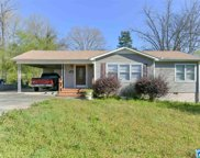 225 Pleasant Rd, Mount Olive image