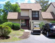 58 Peter Horry Ct. Unit 151, Georgetown image