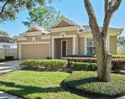 18113 Ashton Park Way, Tampa image