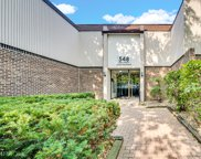 548 73Rd Street Unit #204, Downers Grove image