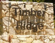 Timber Ridge Lane Unit lot11, Shaver Lake image