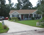 821 Myrtle Ridge Drive, Conway image
