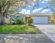 3010 Cara Court, Palm Harbor image