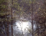 Mt  Beasor, Sopchoppy image