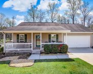 357 Mary Alice Drive, Winder image