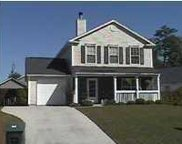 161 Droos Way, Charleston image