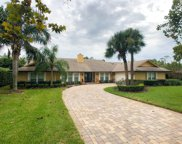 6241 Indian Meadow Street, Orlando image