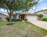 4217 Silverwood Trail, Fort Worth image
