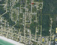 Lot 24 Elm Street, Santa Rosa Beach image