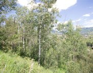 36817 Tree Haus Drive, Steamboat Springs image