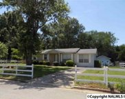 3105 Pineview Drive, Decatur image