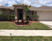 10916 Rockledge View Drive, Riverview image