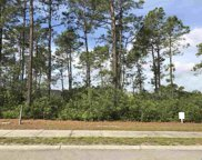 1049 Englemann Oaks Dr, Myrtle Beach image