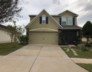 13219 Waterford Castle Drive, Dade City image