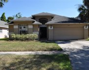 6912 Jamestown Manor Drive, Riverview image