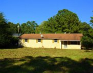 2728 Wash Lever Road, Chapin image
