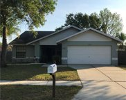 11502 Smokethorn Drive, Riverview image