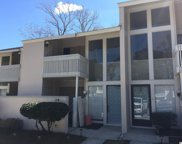 1000 11th Ave N Unit #117, North Myrtle Beach image