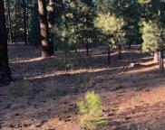 12546 Granite Drive, Truckee image