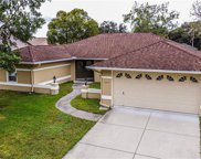 9215 Ruger Drive, New Port Richey image
