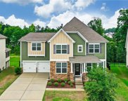 1319 Corey Cabin  Court, Fort Mill image