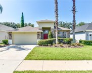 8032 Saint James Way, Mount Dora image