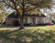 11152 N Terrell Ave, Gonzales image