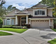 15648 N Himes Avenue, Tampa image