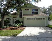 9205 Jubilee Court, Tampa image