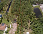 13054 S Lake Mary Jane Road, Orlando image