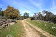 Sierra Oaks, Friant image