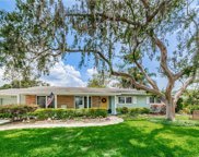 10712 Carrollwood Drive, Tampa image