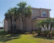 11253 Sparkleberry Dr, Fort Myers image