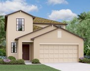 7409 Rosy Periwinkle Court, Tampa image