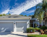 8202 Swann Hollow Drive, Tampa image
