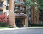 601 Lake Hinsdale Drive Unit 206, Willowbrook image