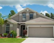 6821 Bluff Meadow Court, Wesley Chapel image