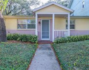 330 5th Avenue N, Safety Harbor image