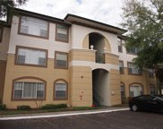17108 Carrington Park Drive Unit 716, Tampa image