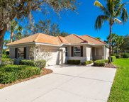 719 Misty Pond Court, Bradenton image