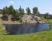 TBD Medicine Mountain Road, Custer image