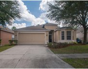 8311 Moccasin Trail Drive, Riverview image