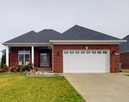 11403 Willow Branch Dr, Louisville image