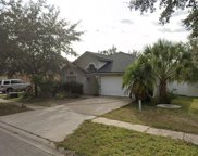 8501 Pecan Brook Court, Tampa image