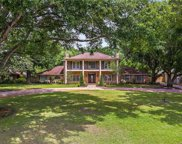 10530 Down Lakeview Circle, Windermere image